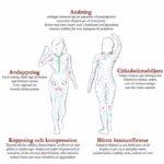 Lymfmassage pdf Eva Demburg